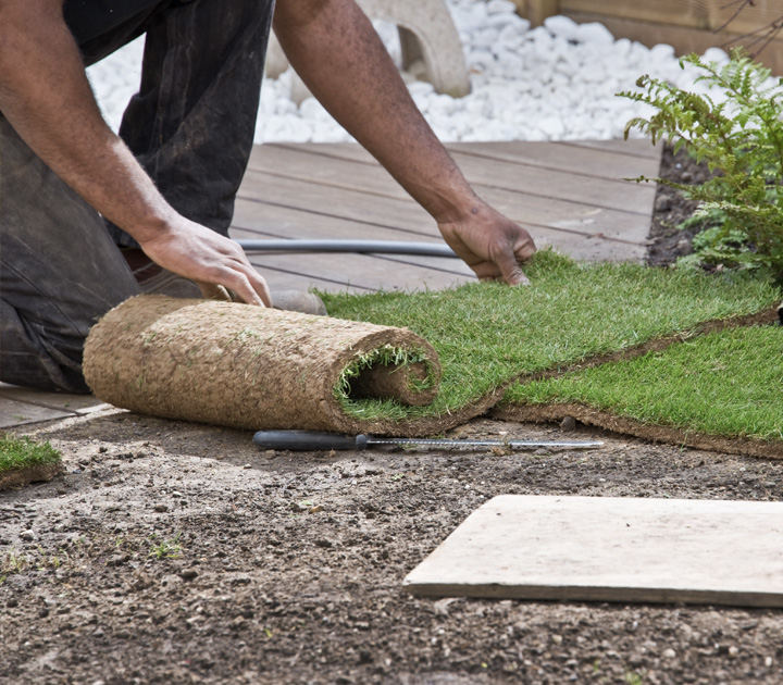 Lawn Installation Services